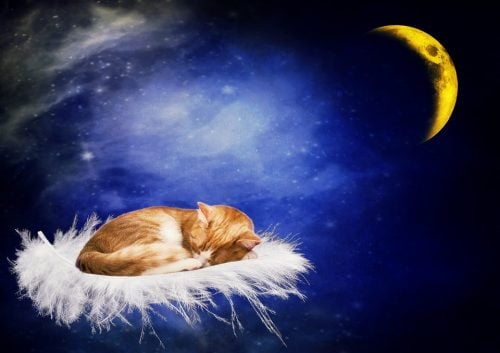 おやすみなさいのスタンプ
