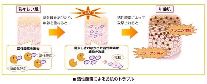 活性酵素によるお肌のトラブル