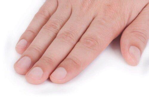 短く切りそろえられた綺麗な爪
